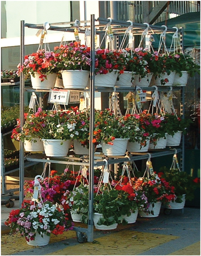 Hanging Basket Displays
